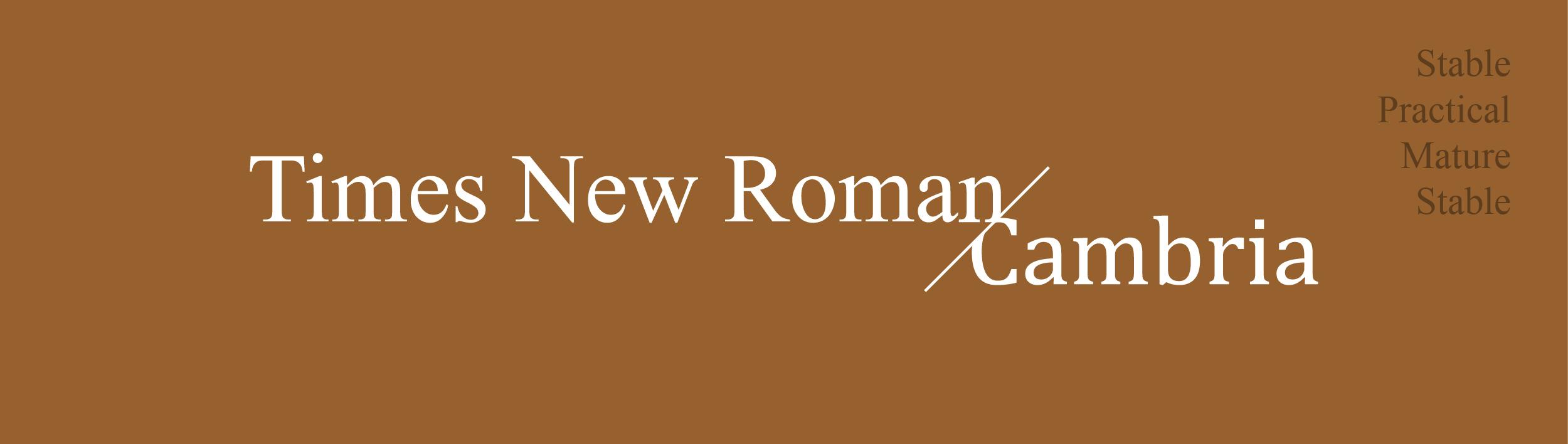 font times new roman cambria