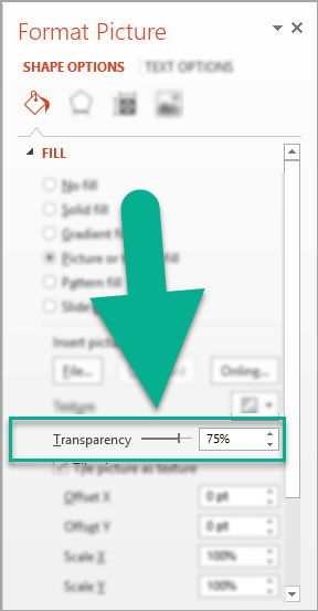 The image transparency option in the Format Picture menu in PowerPoint