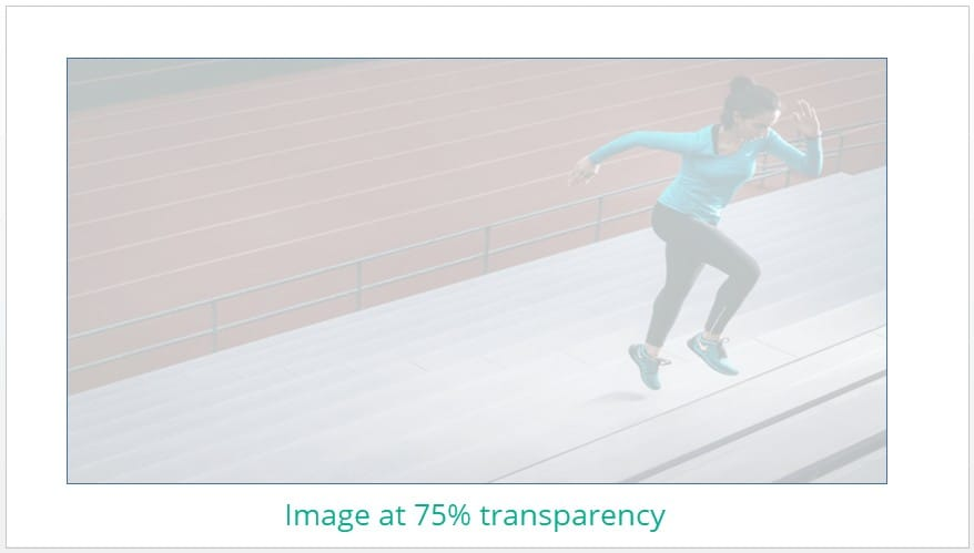 Image inserted into rectangle shape in PowerPoint at 75% transparency