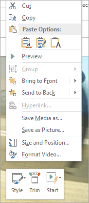 The video formatting options in PowerPoint