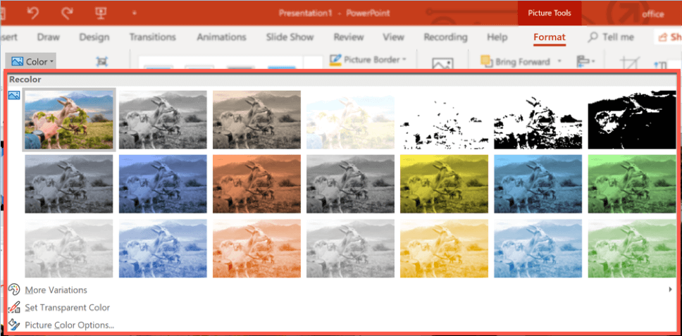 powerpoint's color option