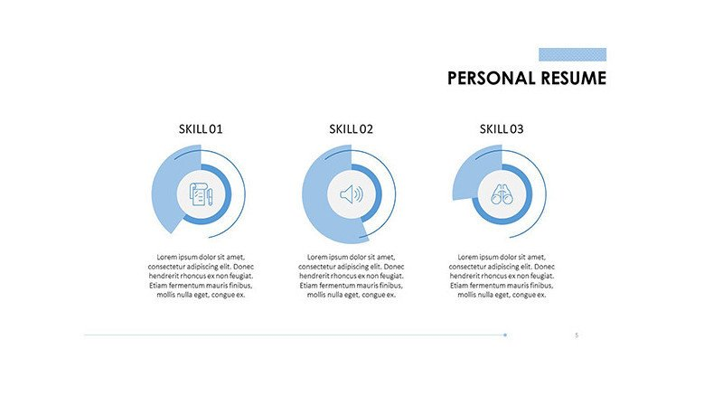personal resume data information in pie chart