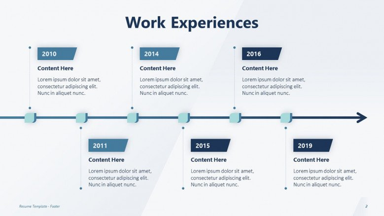 Professional Work Experience Timeline
