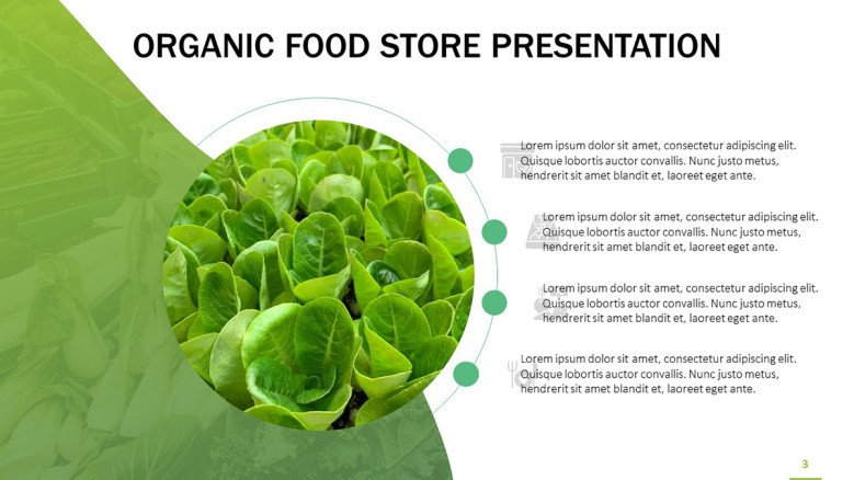 Curved line with four points for an organic food presentation