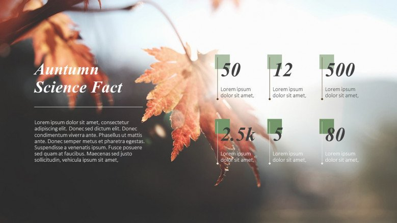 Creative text slide for Autumn Science Facts