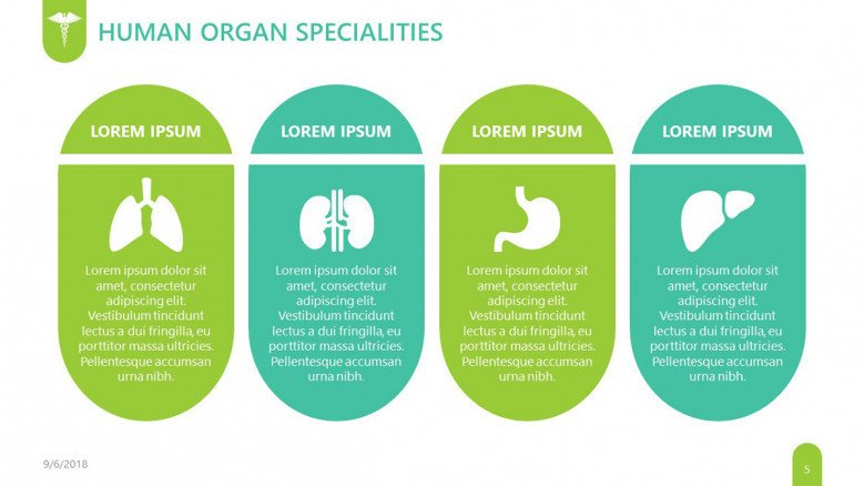 human organ specialties slide for pharmaceutical presentation in tables