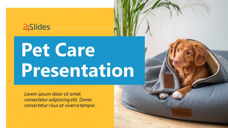 Pet Services Presentation in PowerPoint
