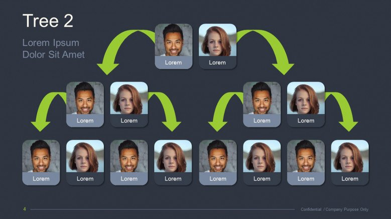Visual Hierarchical Family Tree